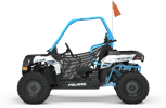 Polaris ACE™ 150